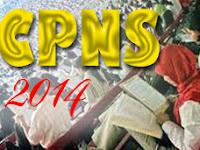 INFO CPNS 2014: Formasi CPNS 2014 Pemerintah Kabupaten Bintan