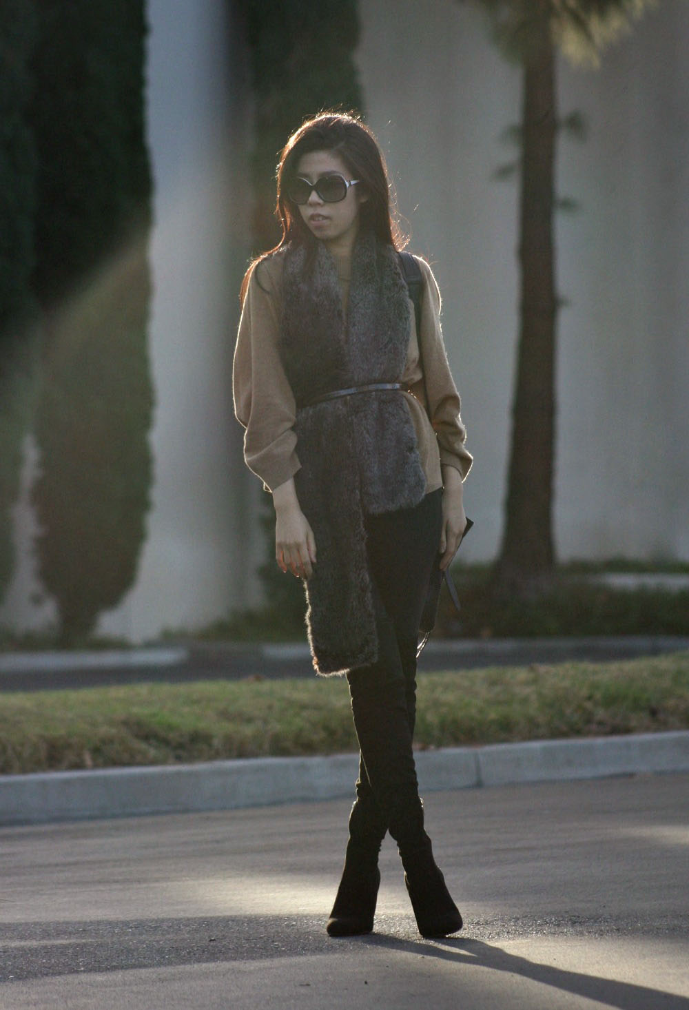 How To Wear a Faux Fur Stole and Over the Knee Suede Boots
