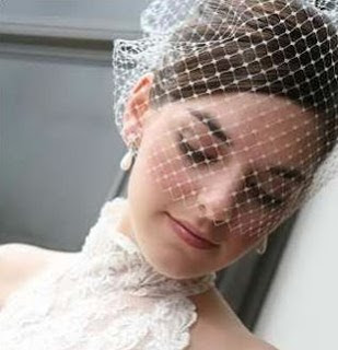 bride wearing a birdcage veil