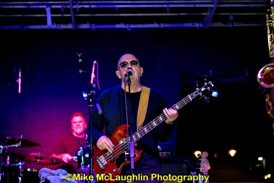 Steve Bingham - Bass Guitarist