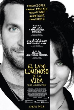 El Lado Luminoso De La Vida DVDrip 2013 Español Latino Un Link