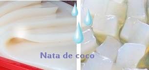 nata de coco