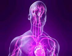 Vegetative-vascular dystonia