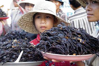 FriedSpiders  10 Makanan Pelik Dan Eksotik di Asia
