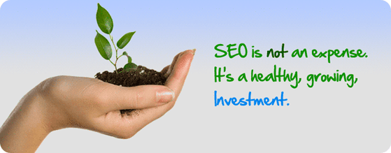 Hiring a Professional Digital Marketing agency is an investment