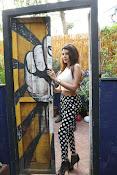 Hindi Actress Sherlyn Chopra photos-thumbnail-6