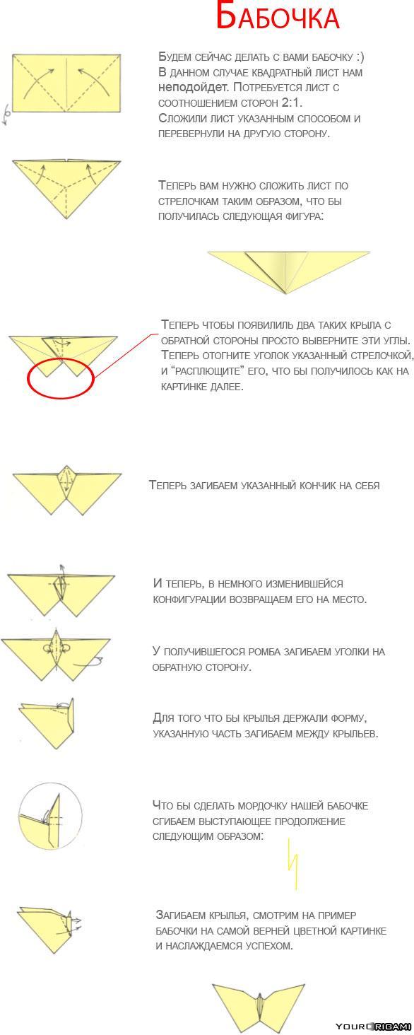 Схема бабочки оригами из денег схемы