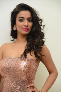 Heena Panchal Stills At Thikka Audio Launch (19).JPG