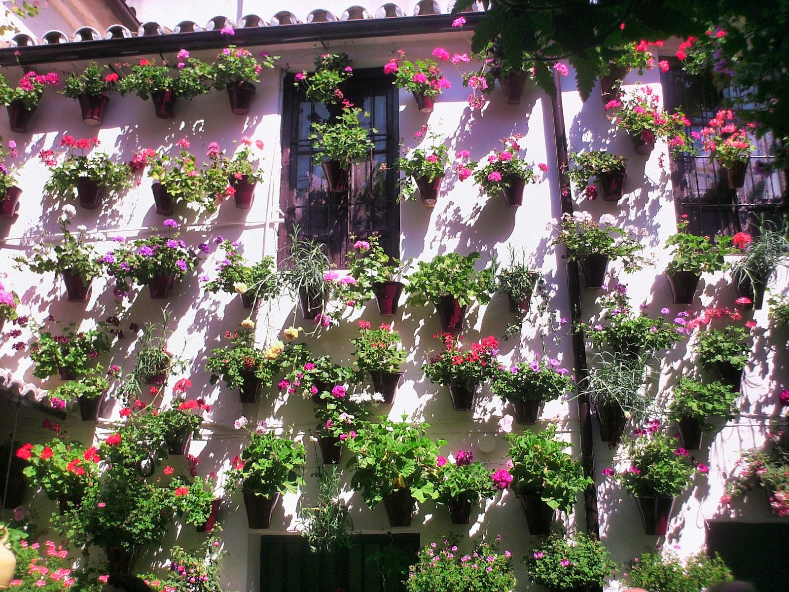 Los patios de c rdoba patrimonio inmaterial de la - Jardines cordoba ...