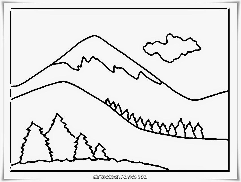 gambar mewarnai hutan cemara di puncak gunung