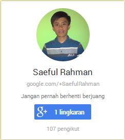Widget Google Plus