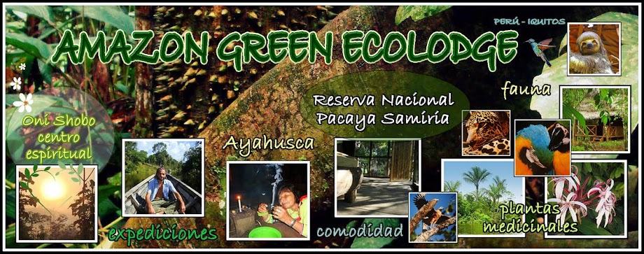 AMAZON GREEN ECOLODGE