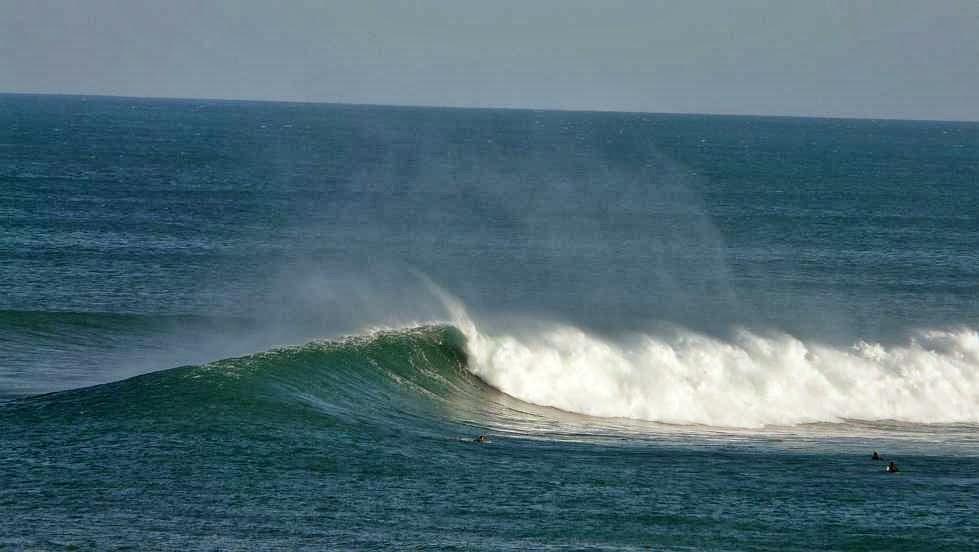 menakoz surfista pillando una ola