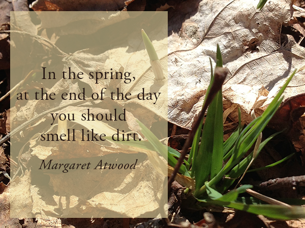 garden, spring, Margaret Atwood, quote, spring quote, gardening quote