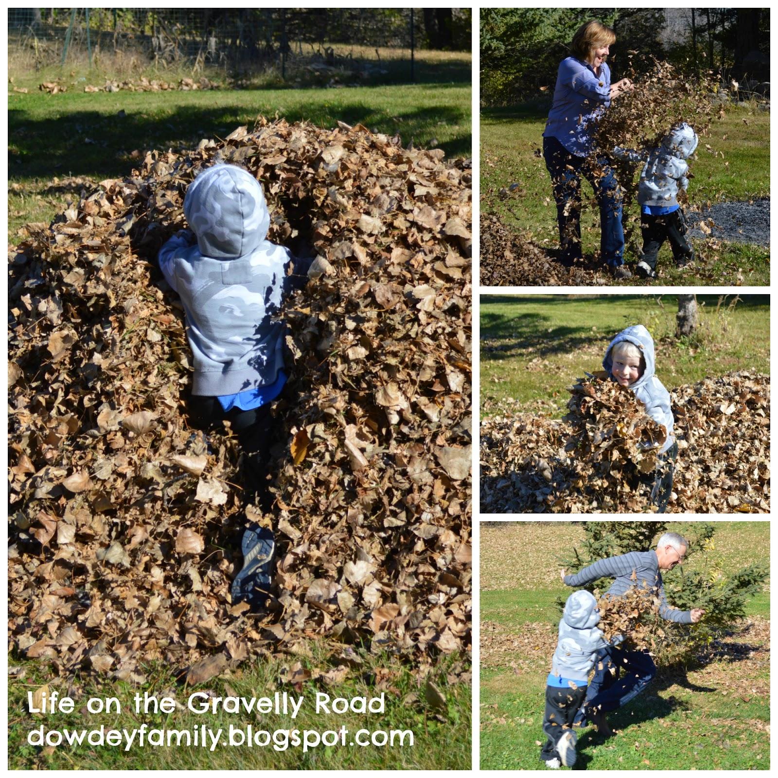 large leaf pile
