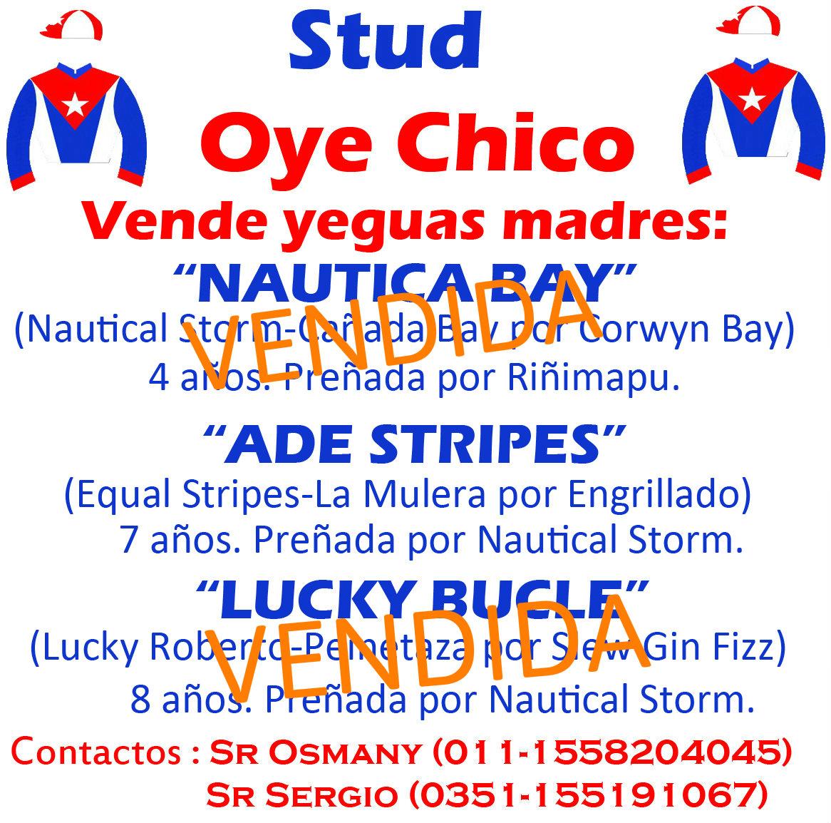 OYE CHICO MADRES