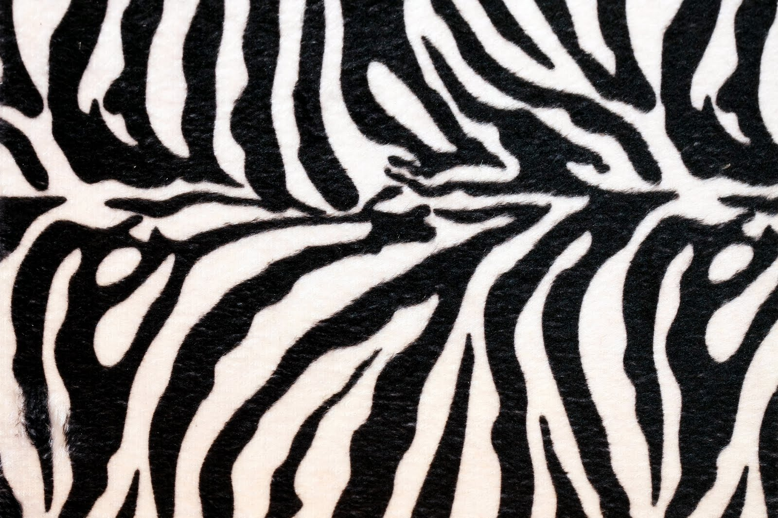 zebra print wallpaper i love zebra print zebra wallpaper pack 3 zebra    Zebra Skin Wallpaper