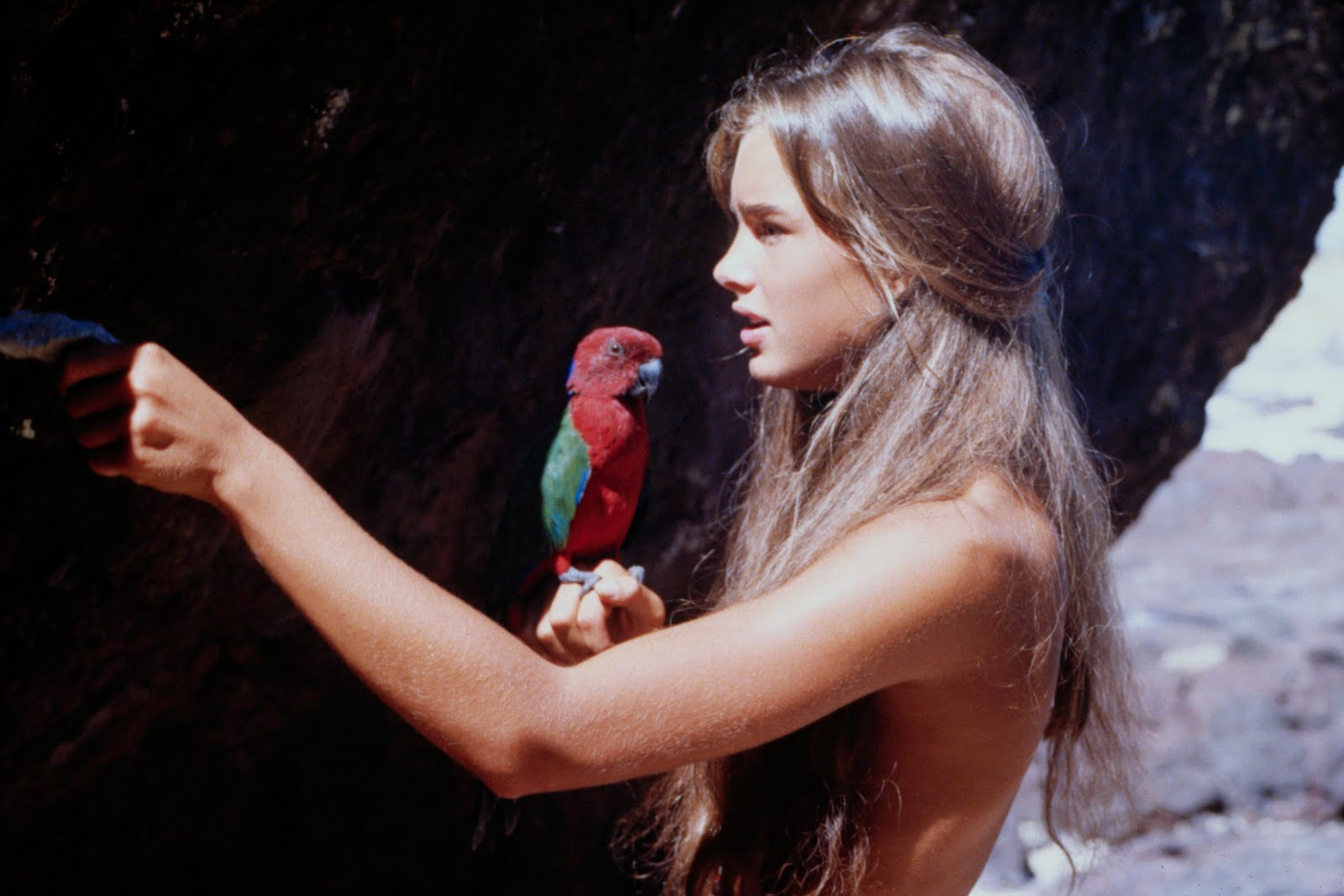 Movie Review Land: THE BLUE LAGOON