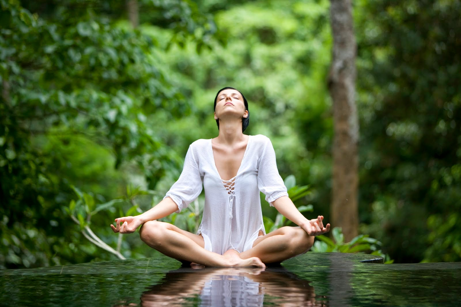 obat pelangsing herbal cepat aman dan ampuh,pelangsing alami