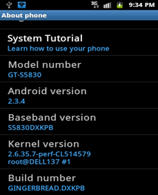 Install S5830DXKPB Android 2.3.4 On Samsung Galaxy Ace GT-S5830