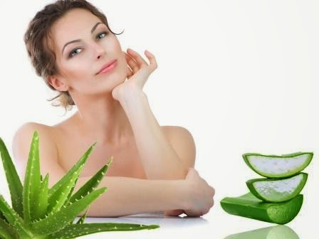 Aloe Vera Uses for skin care