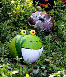 Frog and Owl Pumpkins