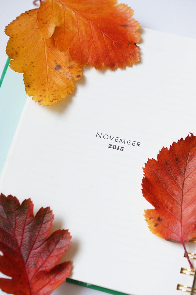 Hello Freckles November Leaves Autumn