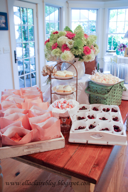Ella Claire}: Ella's First Birthday Party~ Shabby Chic Garden Party