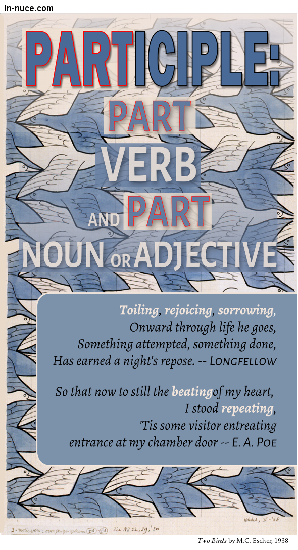 in-nuce verbs participles