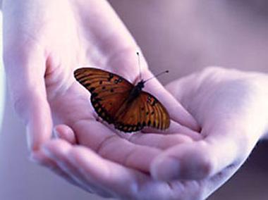 Resultado de imagen de mariposas en las manos