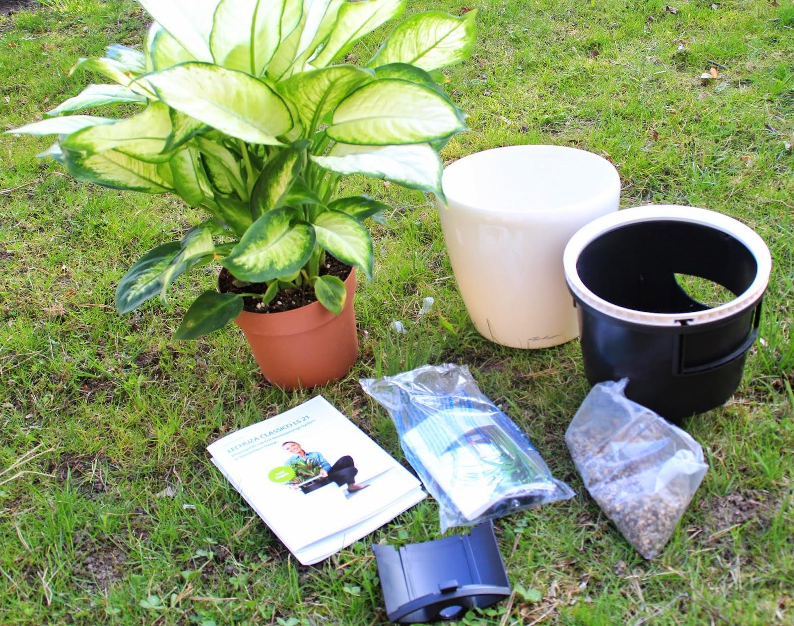 jucheer testet lechuza design f r die pflanzen. Black Bedroom Furniture Sets. Home Design Ideas