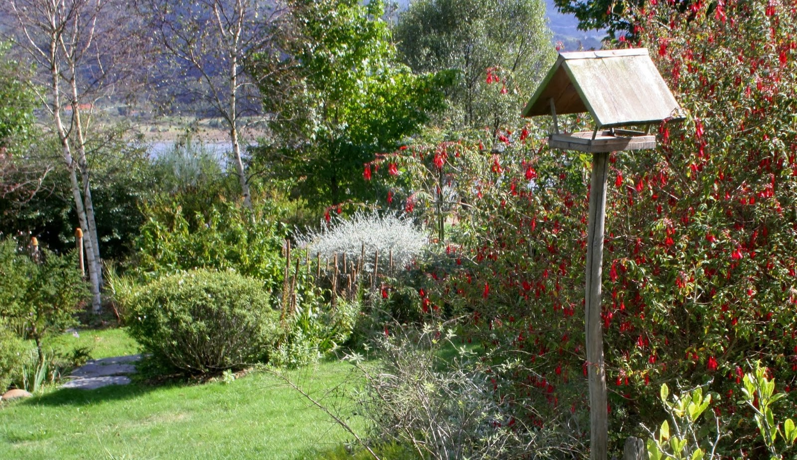 El jard n de margarita en octubre for Casa jardin 8 de octubre