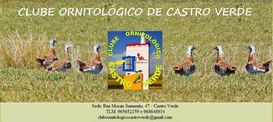 Clube Ornitologico de Castro Verde