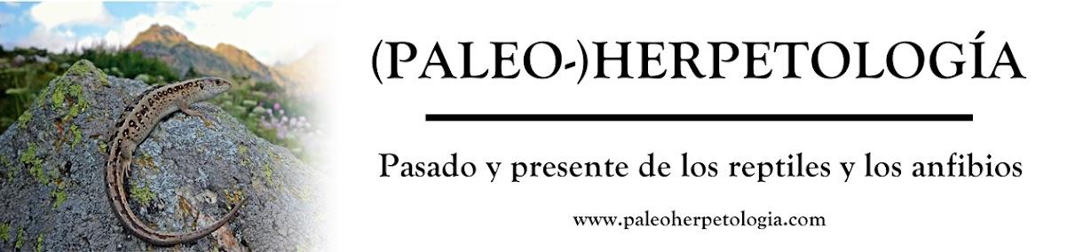 (Paleo-)Herpetología