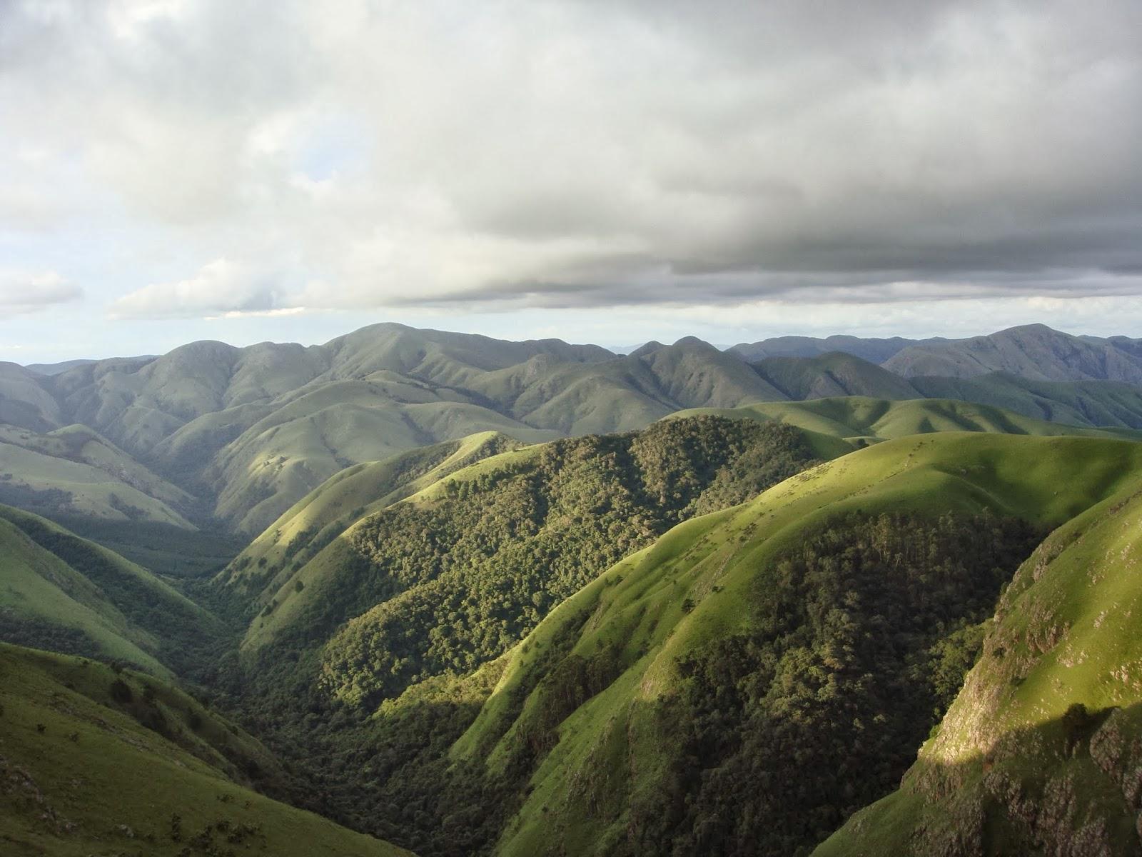 Baberton rolling green hills