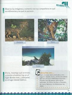 Apoyo Primaria Exploración de la Naturaleza y la Sociedad 2do Grado Bloque II Lección 4 Cómo son los lugares donde viven plantas y animales silvestres