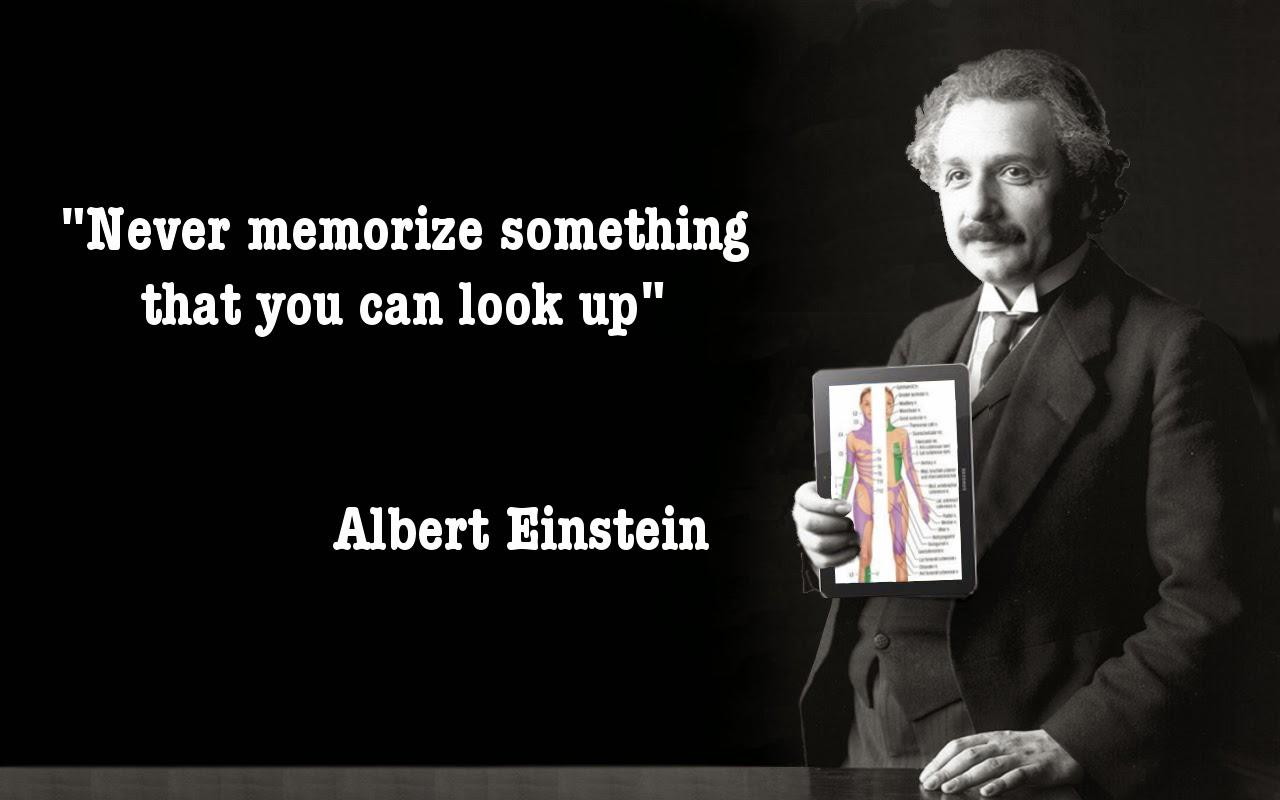 Albert Einstein Photo Quotes