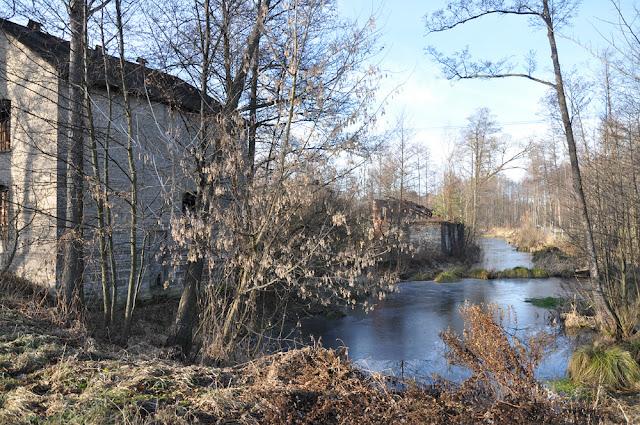 Morzywół. Po lewej stronie ceglany młyn zbudowany na początku lat 50. XX wieku, w środku stary budynek spichlerza, po prawej stronie znajdował się stary drewniany młyn. Odwiedzali go niegdyś żołnierze Hubala. Fot. KW.
