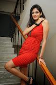 Actress Swetha Jadhav Glam Pics-thumbnail-11