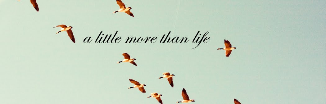 A Little More Than Life