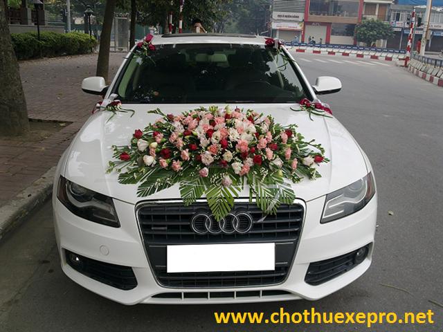 Cho thuê xe cưới Audi A4 mui cứng tại Hà Nội
