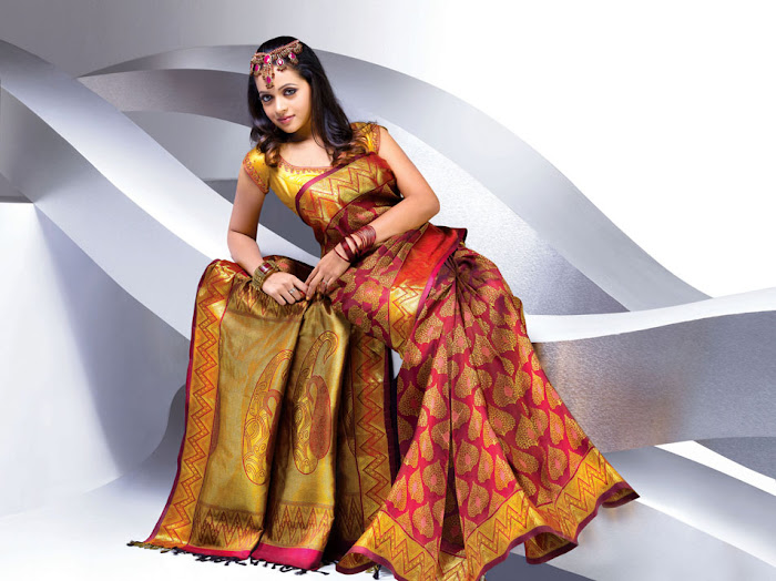 bhavana nwe saree , bhavana glamour  images