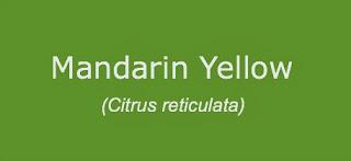 Mandarin Yellow Essential Oil