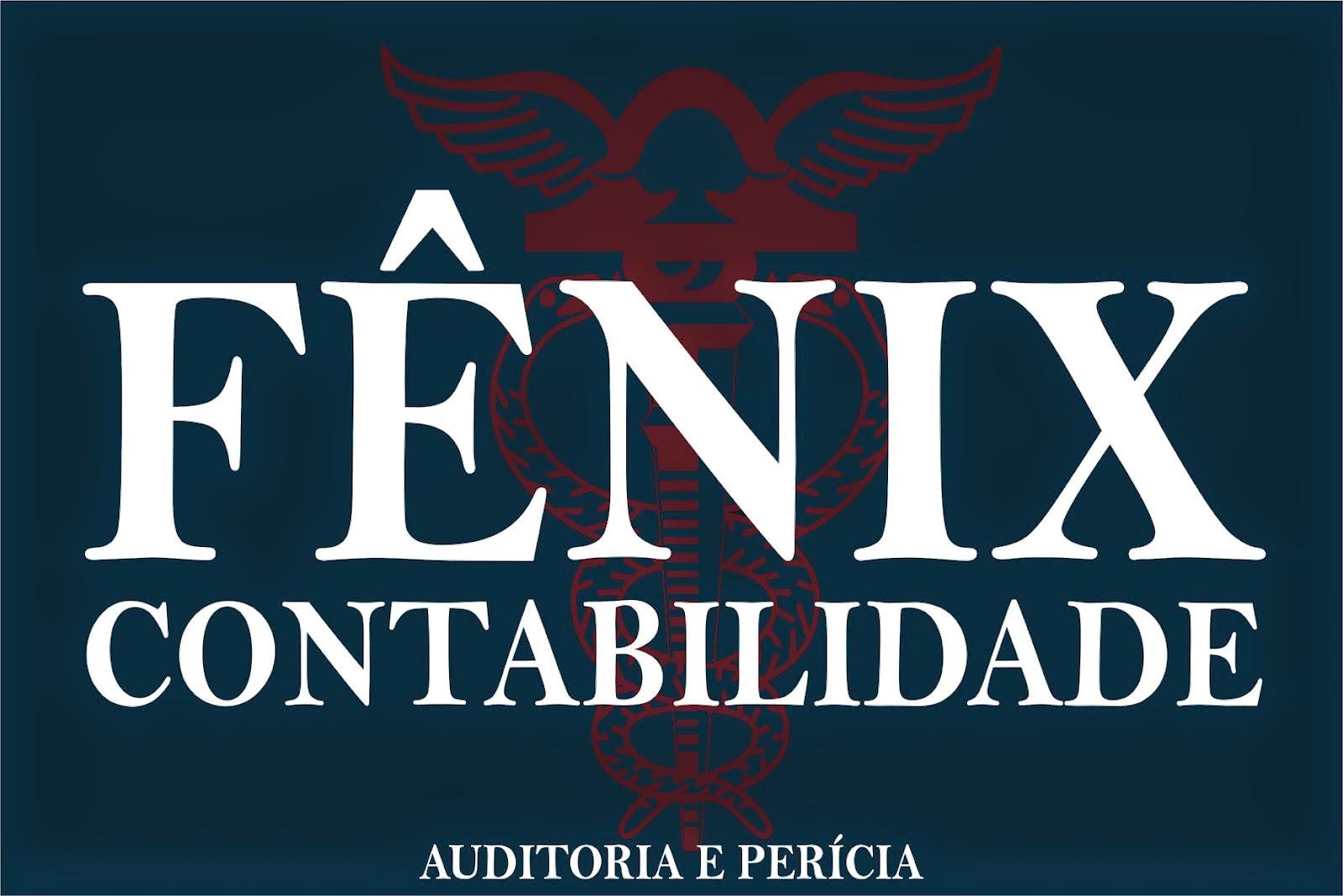 FENIX CONTABILIDADE