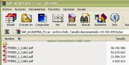Manuales SAP FI TFIN50 TFIN52