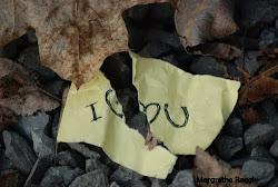 eu escrevo com a alma, mas reflito com a mente...será que todos fazem isso? ñ, ñ sei responder