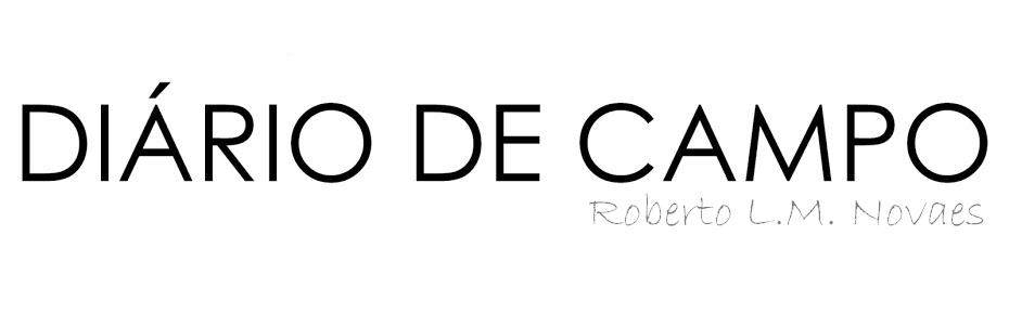 Diário de campo | Roberto Novaes