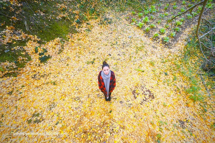 Thiếu nữ dao phố mùa thu 13