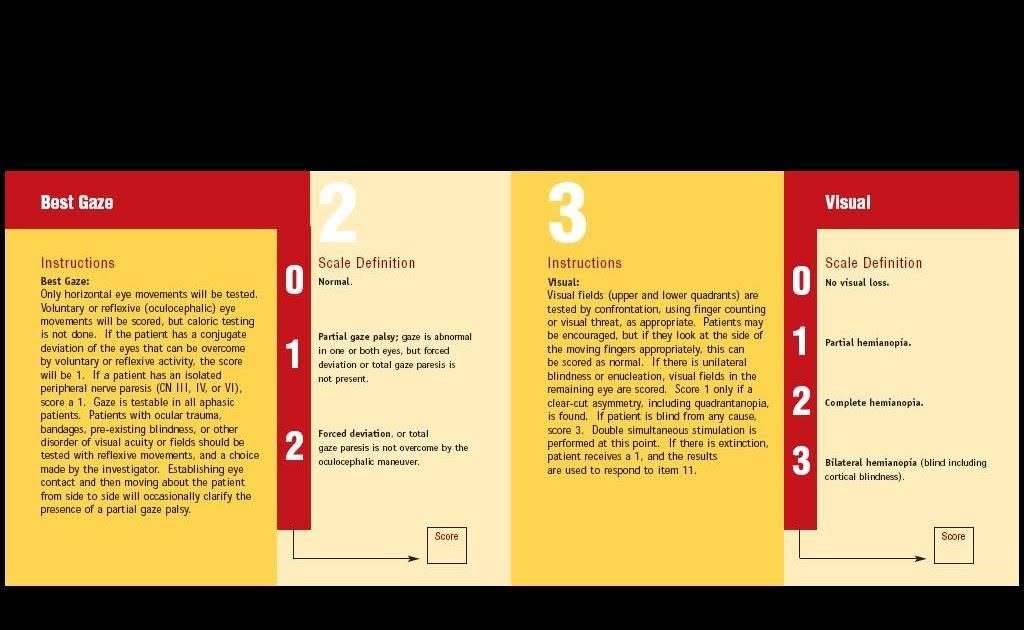 nih stroke scale booklet