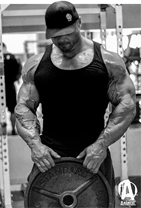 Musculação Frank McGrath   Animal Arms